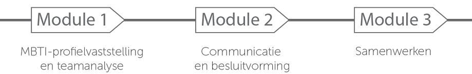 Modules Teamontwikkeling